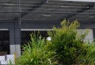 Amity Wire fencing 20